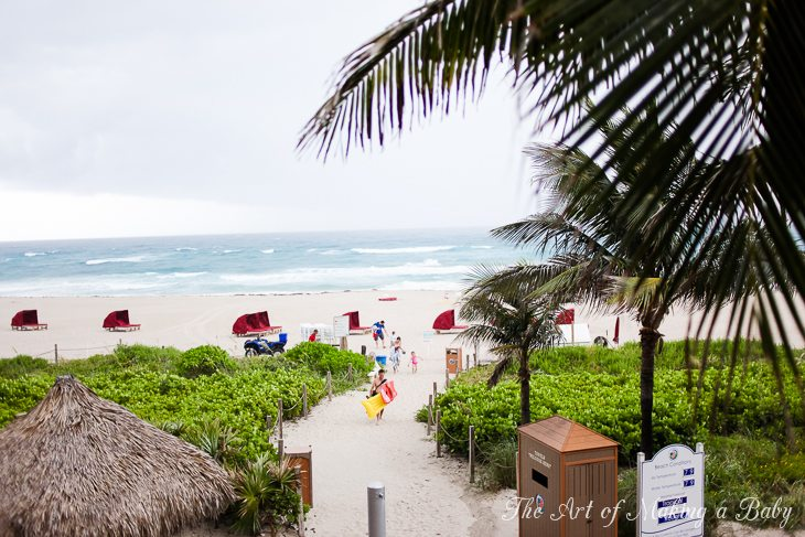 Traveling Around Florida: Palm Beach Ii