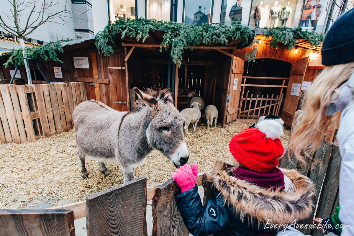 Everything You Wanted To Know About Christmas Markets In Germany