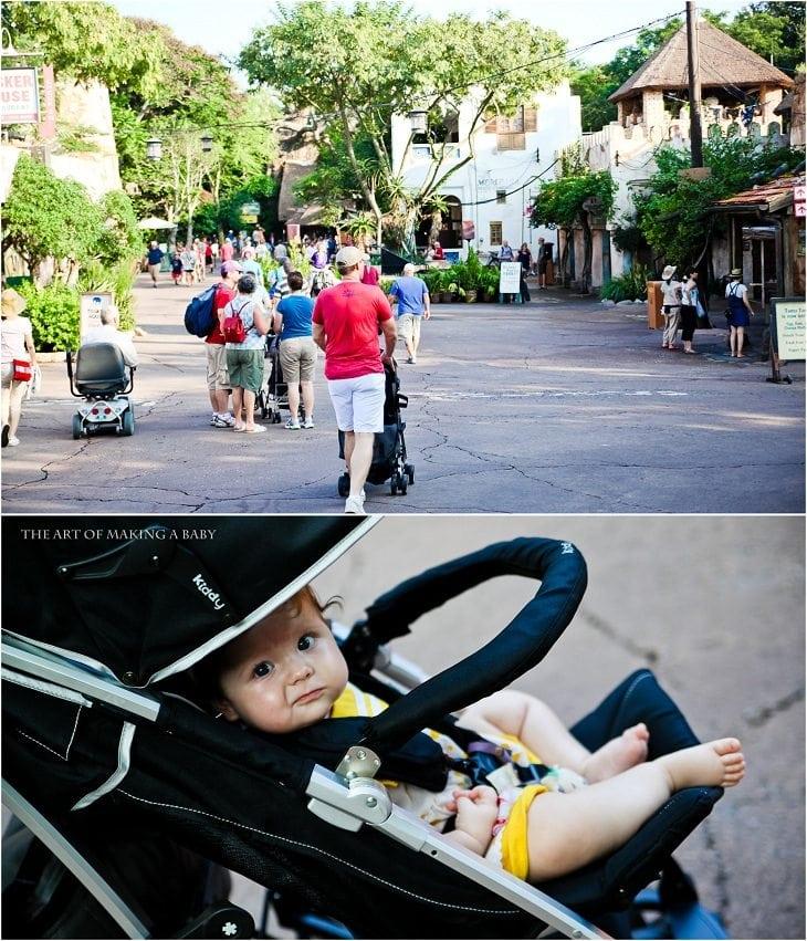 Disneyworld: Day 2, Animal Kingdom