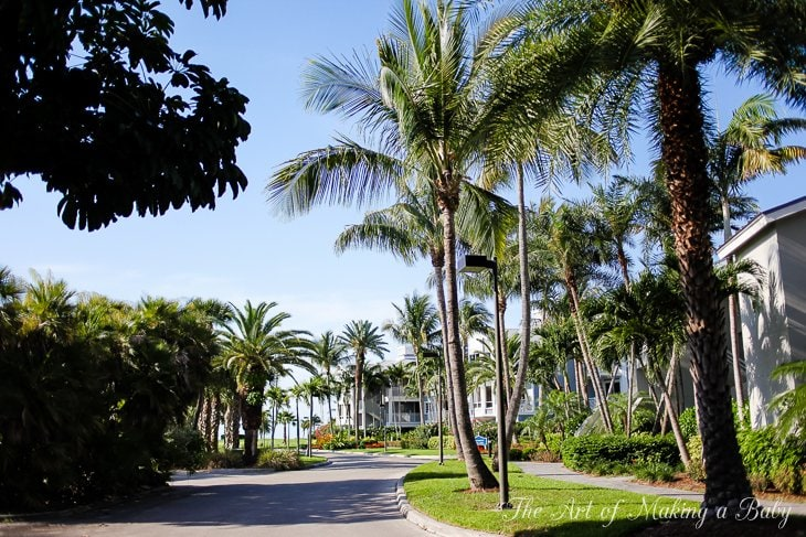 South Seas Getaway Day 3: A Tour Around The Resort And Pool Time