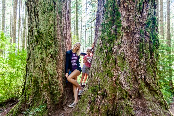 Weekend Trips: Things To Do In Portland With Kids